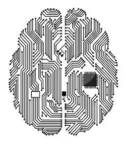 Motherboard/Brain