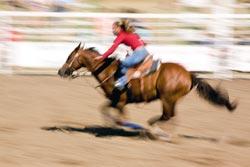 Speeding Horse